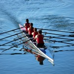 Tips To Create a Sense of Oneness Within Your Team.